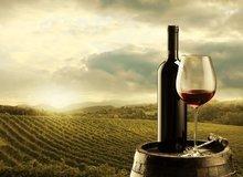 Sommeliérský kurz - Vína z Moravy, vína z Čech
