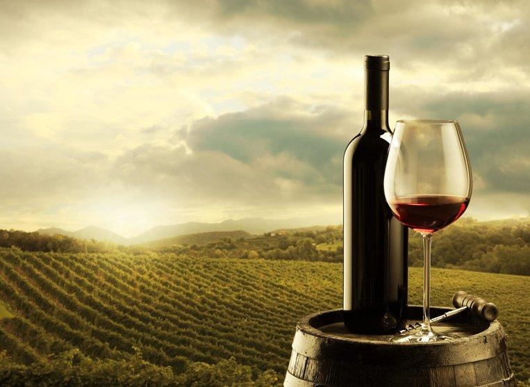 Sommelierský kurz - Vína z Moravy, vína z Čech
