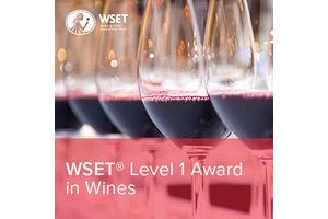 Certifikovaný sommeliérský kurz WSET level 1