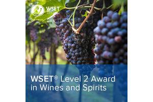 Dvoudenní certifikovaný sommeliérský kurz WSET level 2